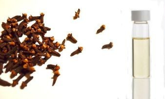 clove and essential oil